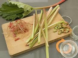 cuisiner la rhubarbe recettes à la rhubarbe et conseils pour les choisir