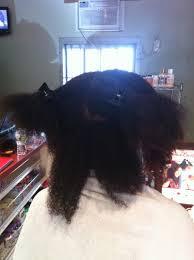 dazey hair dryer natural wonder wonder curl demo at savvy brown meet up savvy brown