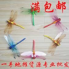 benedetina dragonfly home decor