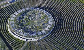 Cherry Point Farm Market by A Hypnotically Aromatic Labyrinth In West Michigan Made Up Of