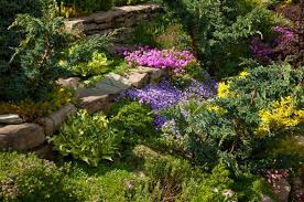 cottage garden ideas