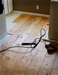 putting a plywood floor for only 60 tidbits from the