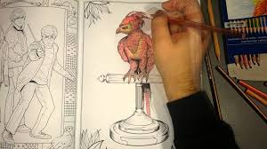 harry potter coloring book phoenix youtube