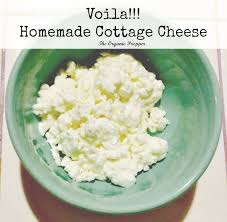 Goat Cottage Cheese by Raw Milk Cottage Cheese U0026 Sour Cream Organic Prepper
