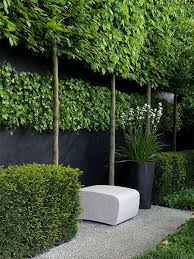Privacy Backyard Ideas by To Create Privacy From Overlooking Neighbours Or To Block Off A
