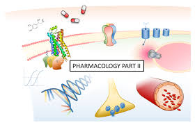 nst part ii and bbs courses u2014 department of pharmacology