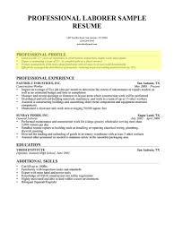 Sample Resume Google Docs by Resume Director Of It Resume Change Margins In Google Docs