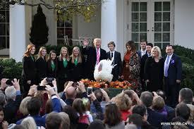 pardons turkey to follow white house thanksgiving tradition