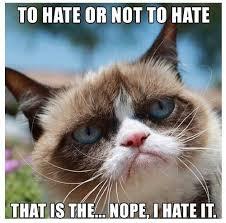 Grump Cat Meme - funny grumpy cat meme