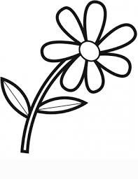 comeufilhos fleur