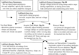 Components Of A Spreadsheet Labpatch An Acquisition And Analysis Program For Patch Clamp