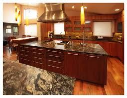 Kitchens With Granite Countertops 39 Best Kitchens W Dark Cabinets Images On Pinterest Dark