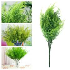 articles with large office plants for sale tag office plants for