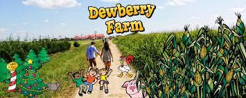 halloween city katy tx dewberry farm brookshire tx dewberry farm corn maze pumpkin