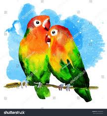 drawn lovebird valentine pencil and in color drawn lovebird