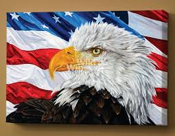 Bald Eagle On Flag Let Freedom Ring Bald Eagle Wrapped Canvas Wild Wings