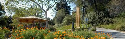 native plants in california botanical gardens in california