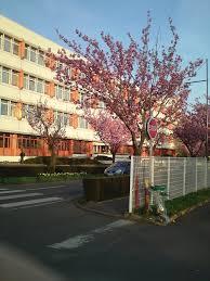siege 3 suisses siège des 3 suisses rue holden mapio
