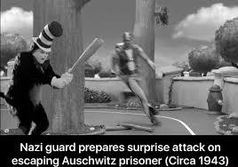 Cat In The Hat Meme - short cat in the hat meme dump album on imgur