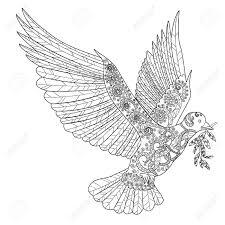 drawn dove coloring pencil and in color drawn dove coloring