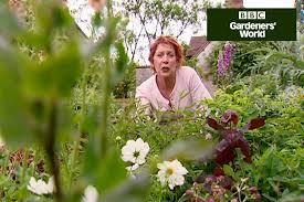 prune ornamental grasses in gardenersworld