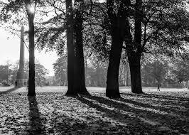 duthie park aberdeen barry howie u0027s the art of photography oca