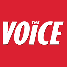 the voice app android the voice app apk for free on your android ios mobile