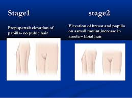 older women genital hair photos revision on cases of reproductive endocrinology