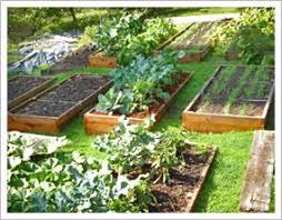 sweet design raised bed garden plans contemporary decoration