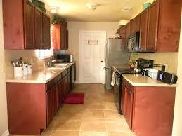 galley kitchen designs ideas kitchen galley kitchen design ideas small pictures furniture