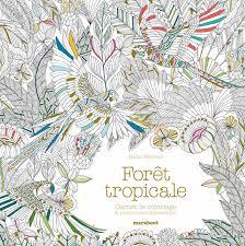Cahier de coloriage la forêt tropicale  la Ruche des Passions