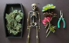 halloween diy coffin succulent planter wild amor