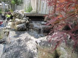backyard water feature u2013 glen echo nurseries