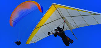 How High Should I Hang A Picture by Paragliding And Hang Gliding Torrey Pines Gliderport