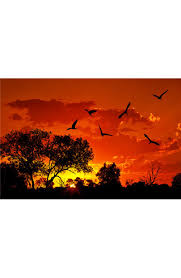 landscape wall murals wall prints wall decals murals shop landscape of africa with warm sunset wall mural