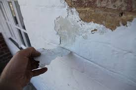 heritage consulting damp caused by plastic masonry paint