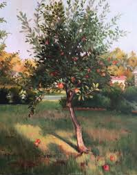 Backyard Oil Saatchi Art Backyard Apple Tree Oil Painting Painting By Ann Miller
