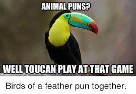 Animal Pun Meme - animal puns welltoucan play at that game quickmemecom birds of a