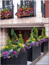 25 trending fall flower boxes ideas on pinterest fall window