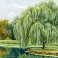 under the willow tree painting by sarah batalka