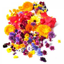 Where To Buy Edible Flowers - herbs unlimited