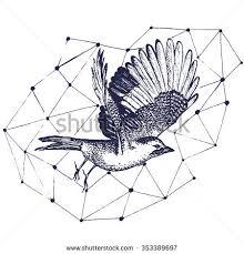 sketch birds flying vector sketch hand stock vector 369093182