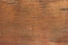 free photo wood texture pattern tree free image on pixabay