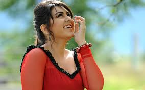 download cute hansika motwani wallpapers and hd backgrounds