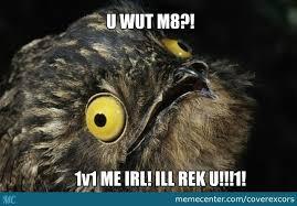 Potoo Bird Meme - potoo bird ain t havin that shiet by coverexcors meme center