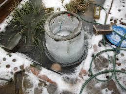 how to grow moss indoors u2013 tips for creating an indoor moss garden