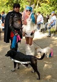 boxer puppy halloween costumes 30 dog halloween costumes