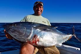 tuna and shark charters