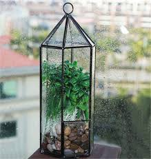 aliexpress com buy hexagonal hanging glass garden terrarium