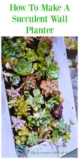 best 25 succulent wall diy ideas on pinterest succulent wall